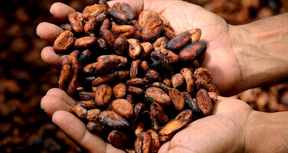 [Interview gourmande] A la rencontre de Sandra Kati, passionnée de chocolat pour décrypter la mise en tourisme du cacao!